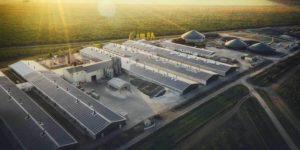 Emissio Solaranlage Leipzig